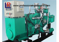 Electric Small 50kw Wood Gas Power Plant Natural Gas Generators 3 Phase Powered by New Energy
