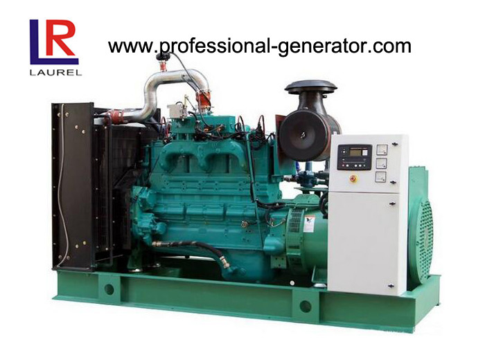 Environmental Protection 300kw Natural Gas Generator with CHP System Good Performance