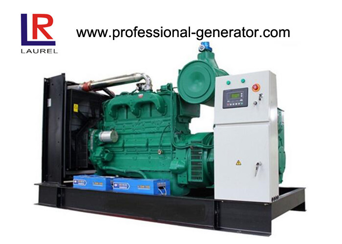 Environmental Protection 500kw Natural Gas Generators with Good Performance