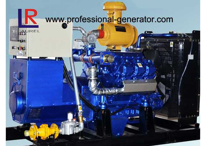 Water Cooled 100kw Biogas Generator with CE , Electric Control Ignition  V Type